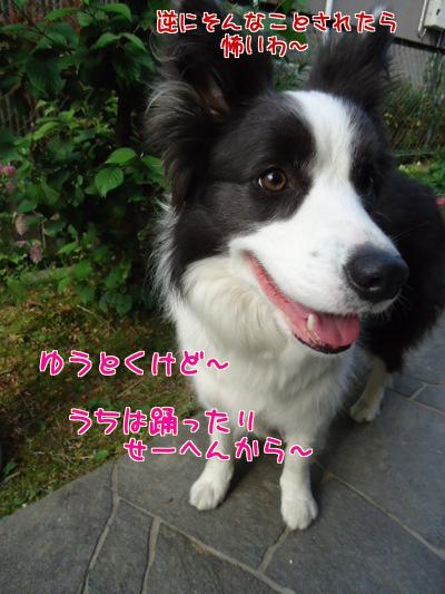 uJFoGie_u0kVocZ.jpg