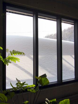 20130217積雪量-2