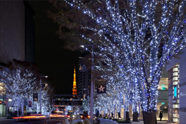 photo_snow.jpg