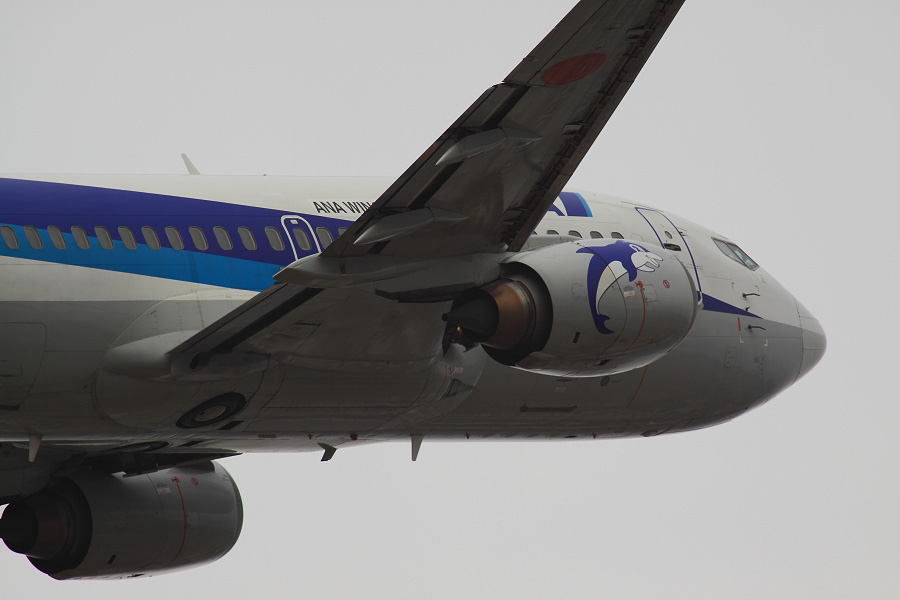 AKX B737-54K ANA503@下河原緑地展望デッキ(by EOS 50D with SIGMA APO 300mm F2.8 EX DG HSM + APO TC2x EX DG)