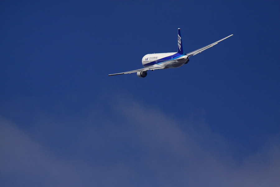 ANA B767-381 ANA22@下河原緑地展望デッキ(by EOS 50D with SIGMA APO 300mm F2.8 EX DG HSM + APO TC2x EX DG)
