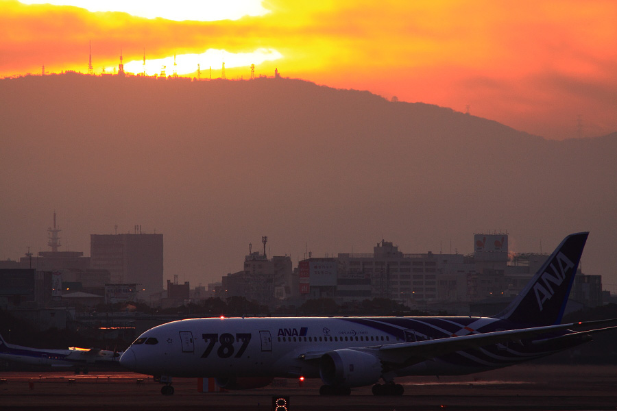 ANA B787-881 ANA961@RWY14Rエンド猪名川土手(by EOS 50D with SIGMA APO 300mm F2.8 EX DG HSM + APO TC1.4x EX DG)