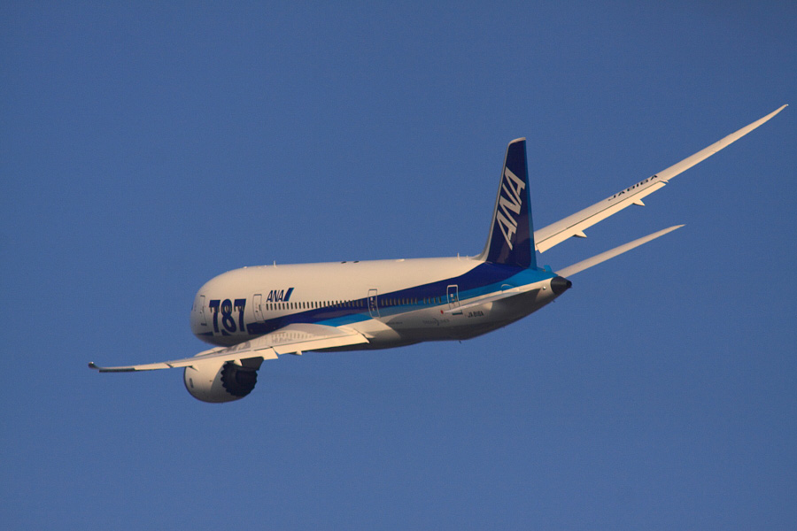 ANA B787-881 ANA541@RWY14Rエンド猪名川土手(by EOS 50D with SIGMA APO 300mm F2.8 EX DG HSM + APO TC2x EX DG)