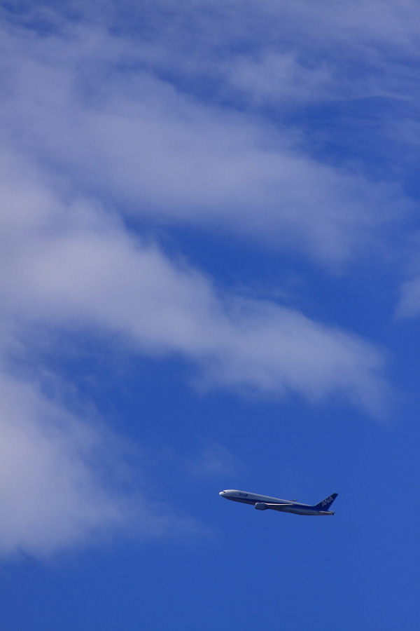 ANA B777-281 ANA24@伊丹スカイパーク(by EOS 50D with SIGMA APO 300mm F2.8 EX DG HSM)