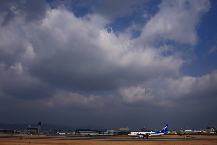 ANA A320-211 ANA426@伊丹スカイパーク(by EOS 40D with SIGMA 18-50mm F2.8 EX DC MACRO)