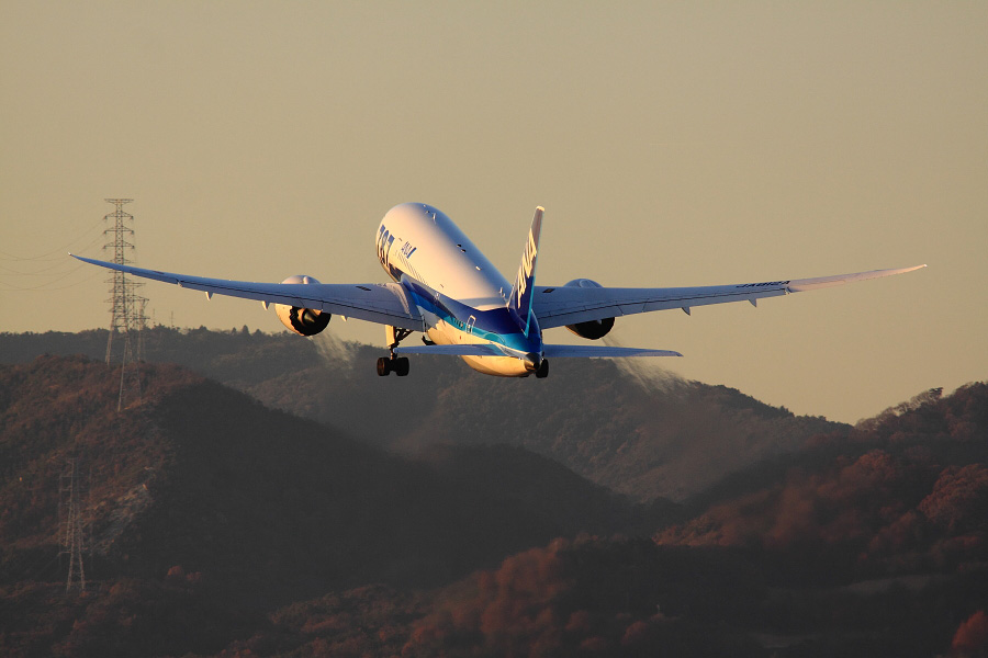 ANA B787-881 ANA32@伊丹スカイパーク(by EOS 50D with SIGMA APO 300mm F2.8 EX DG HSM + APO TC1.4x EX DG)