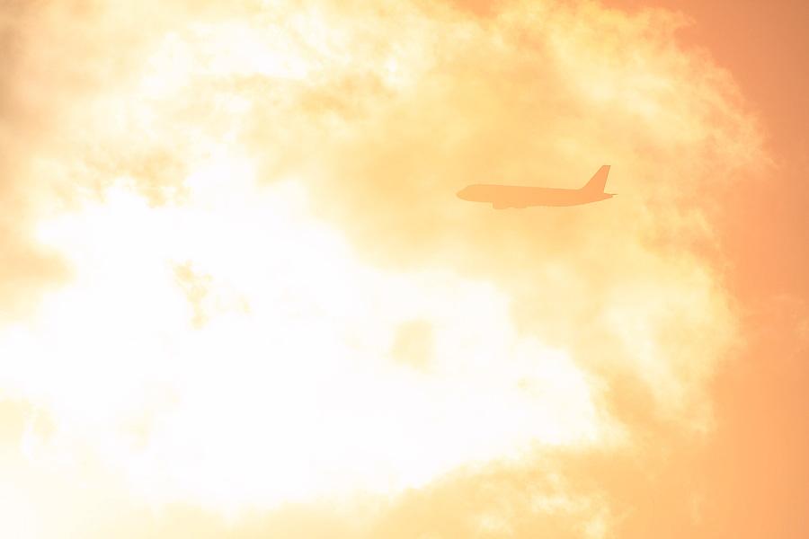 ANA A320-211 ANA527@エアフロントオアシス下河原(by EOS 50D with SIGMA APO 300mm F2.8 EX DG HSM + APO TC2x EX DG)