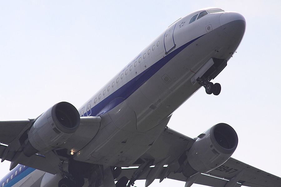 ANA A320-211 ANA161@下河原緑地展望デッキ(by EOS 50D with SIGMA APO 300mm F2.8 EX DG HSM + APO TC2x EX DG)
