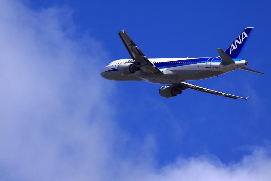 ANA A320-211 ANA555@RWY14Rエンド猪名川土手(by EOS 50D with SIGMA APO 300mm F2.8 EX DG HSM)