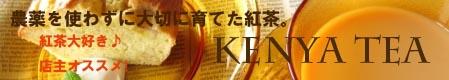 450an-ib_20121111170636.jpg