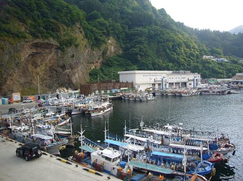 漁船が並ぶ港