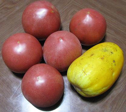 IMG_0923能美のトマト