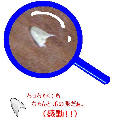 IMG_1369つめ