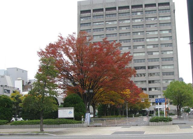 IMG_1590合同庁舎