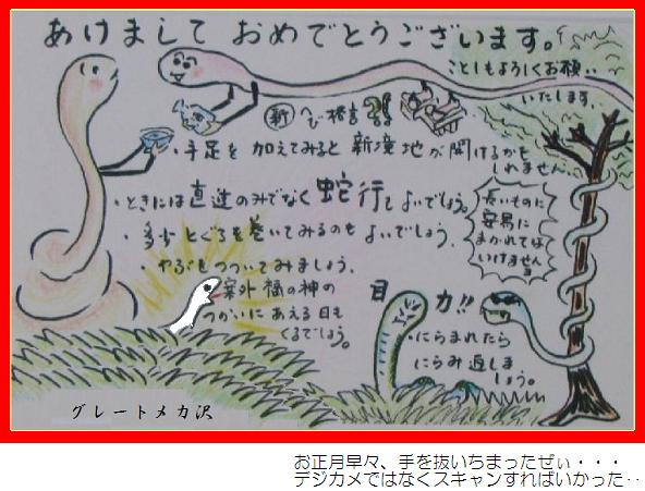 IMG_1853 年賀状H25