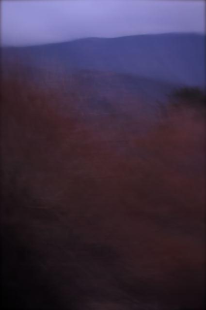 PICT0188.jpg