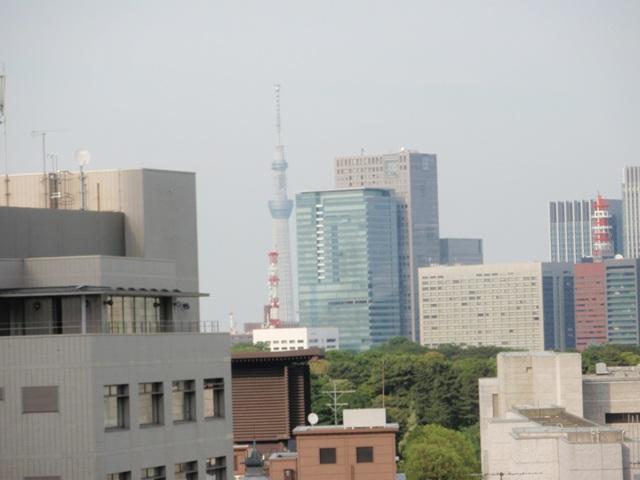 東京スカイツリーP6040543