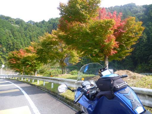 2012_1027_125809-P1060560.jpg