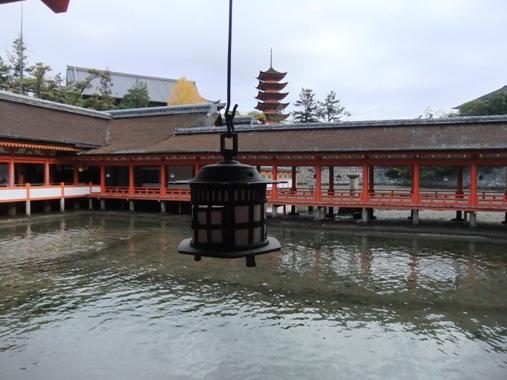 20121124e.jpg