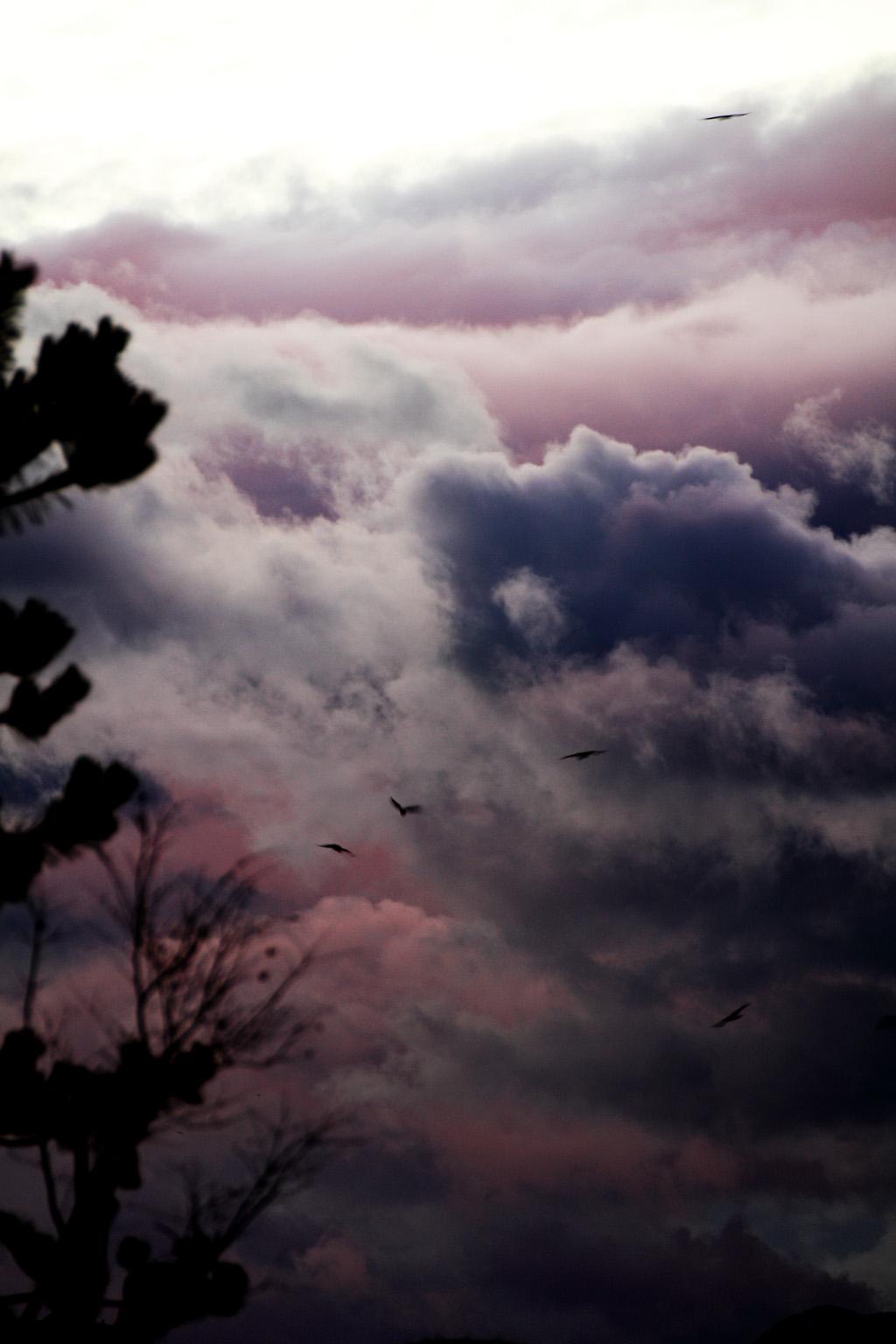 遠州森町の壁雲