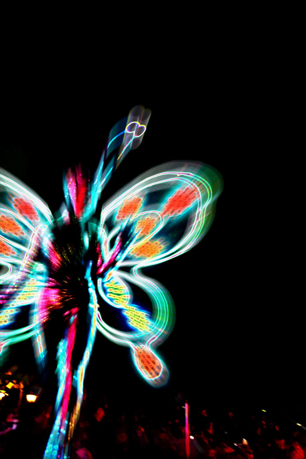 夜の蝶(東京ディズニーランド・エレクトリカルパレード・ドリームライツ)