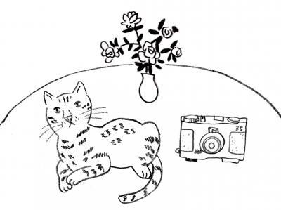 猫カメラ2_bak_convert_20120819161334