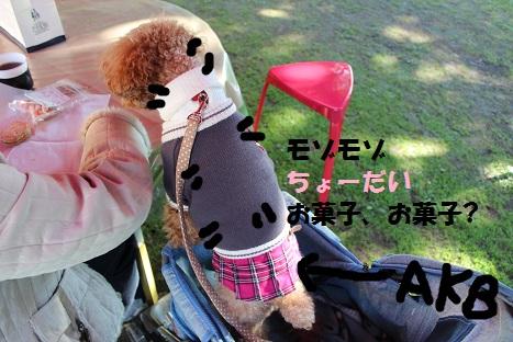 IMG_7993ac.jpg