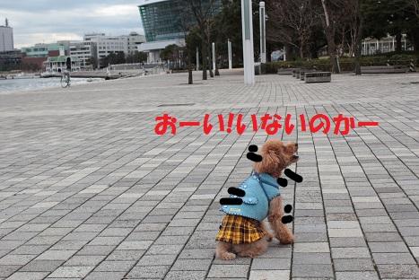 IMG_8340ac.jpg