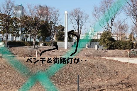 IMG_8754ac.jpg