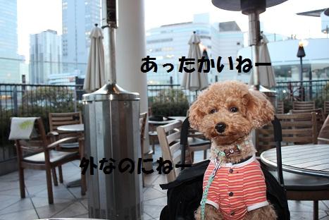 IMG_8807ac.jpg