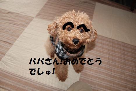 IMG_8945ac.jpg