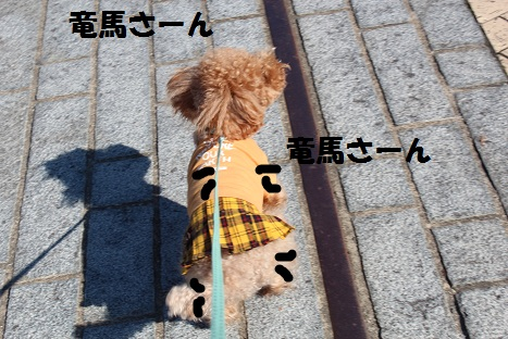 IMG_8970ac.jpg