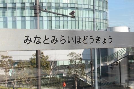 IMG_8994ac.jpg