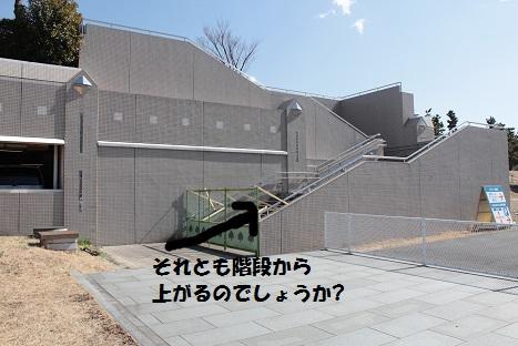 IMG_9174ac.jpg