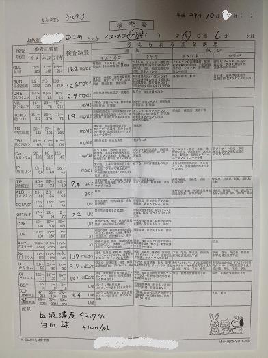 2002-血液検査