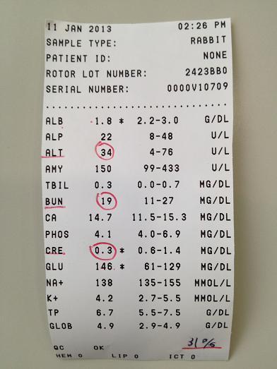 3019-血液検査