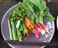 SSP 新鮮な野菜