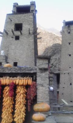 羌族の砦 塔②