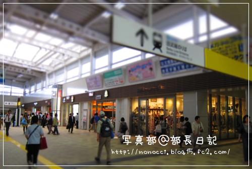 IMG_1218.jpg