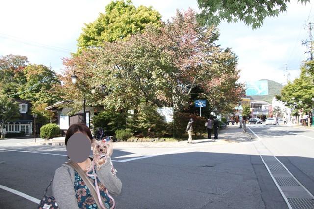 旧軽井沢だよ
