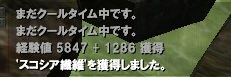 Capture3152.jpg