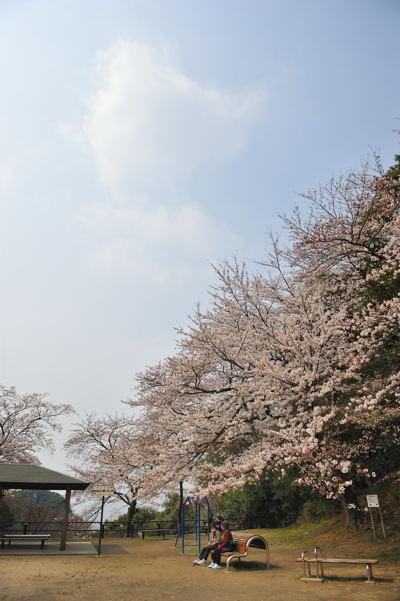 2013-03-23_0001-400.jpg