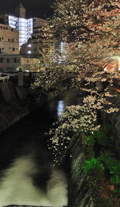 2013-03-27_0150-400.jpg