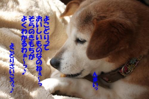 IMG_5655.jpg