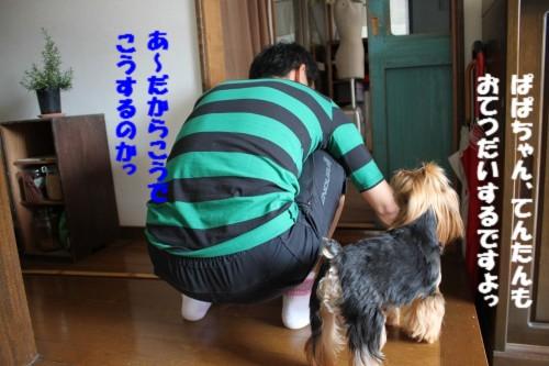 IMG_6999.jpg