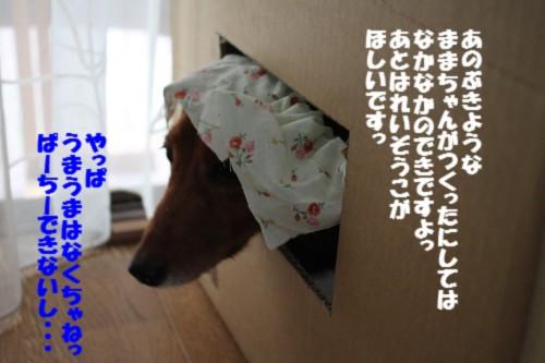 IMG_8899.jpg
