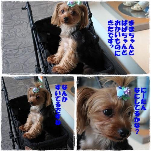 page_20120623171149.jpg