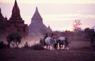世界3大仏教遺跡バカンにて