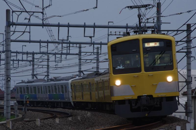 IMGP0288.jpg