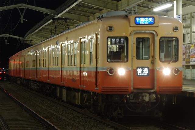 IMGP8398.jpg
